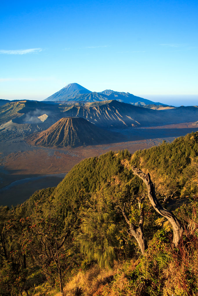 Mount Bromo 03