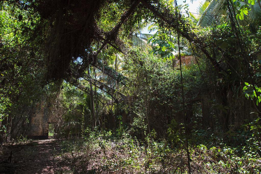 French Guiana 28